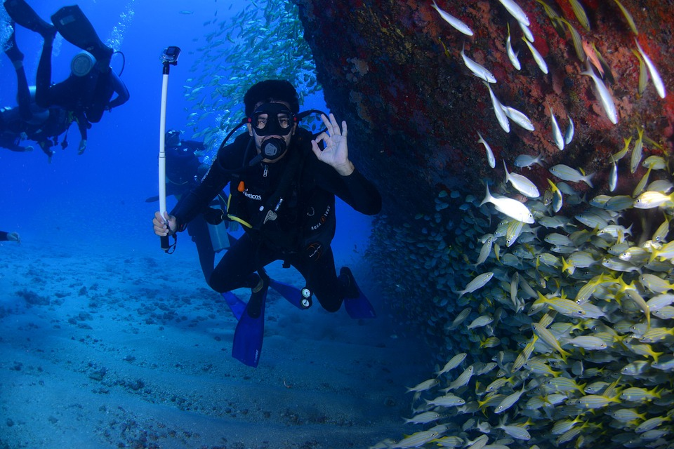 Best Fishing and diving tour